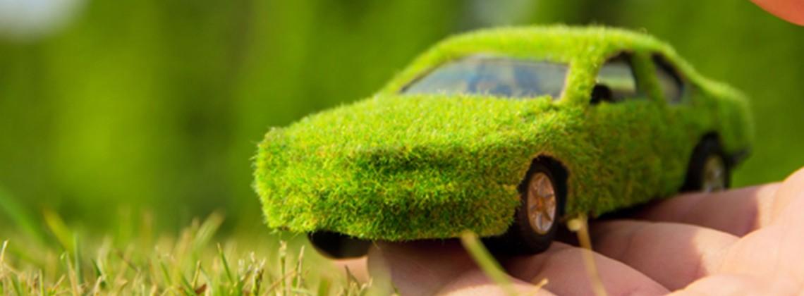 Чистота и свежесть Вашего автомобиля по выгодной цене